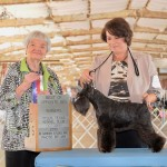 GINGER: Manit's Heart Of The Night  makes her puppy debut