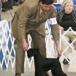 Oso: GCH Victorious Star Holiday