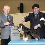 Finishes for her title in less than 2 mo Sizzlin Hot!  Dam; CH Southcreek's Aye Calypso